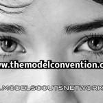 Model Convention Amsterdam 2013