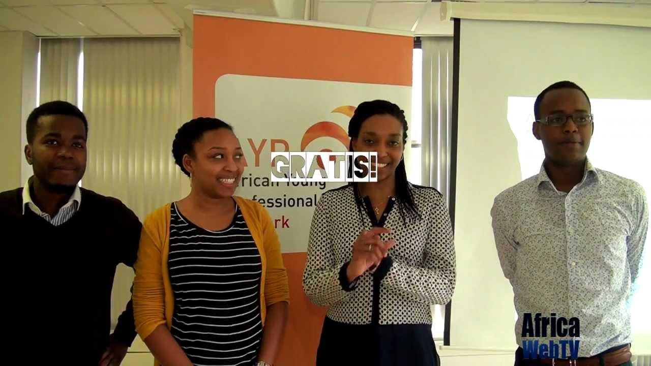 AYP network mentorprogramma 2013