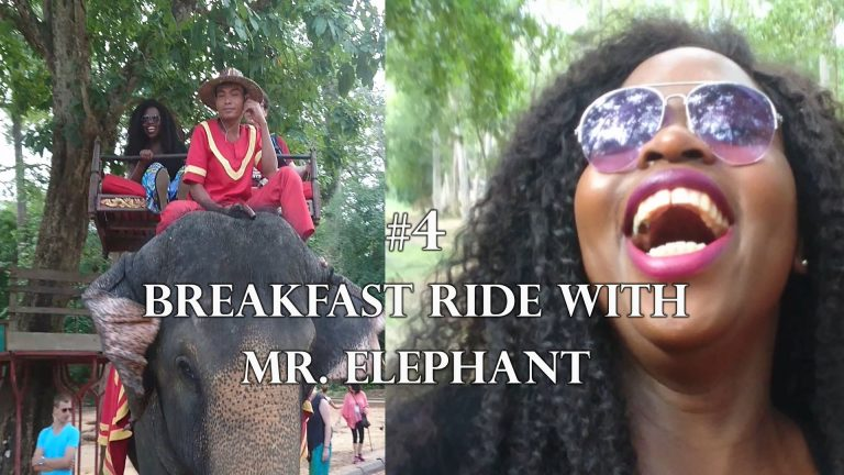 African Girl in Asia – Breakfast ride with Mrs Elephant