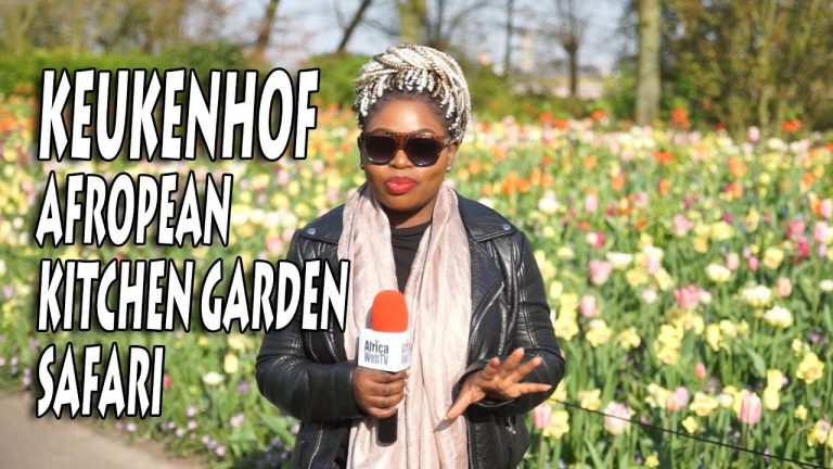 Keukenhof, Amazing Dutch Tulip Garden – Afropean Safari