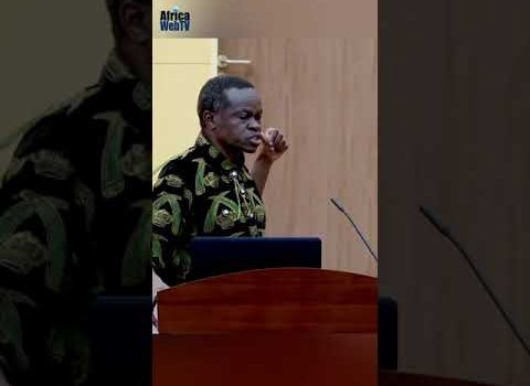 Africa Makes Things Too Difficult For Itself – PLO Lumumba #Shorts